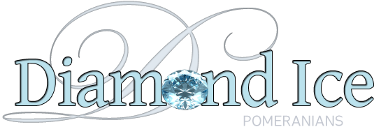 Diamond Ice Pomeranians logo